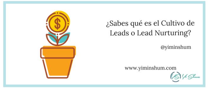 ¿Sabes qué es el Cultivo de Leads o Lead Nurturing?