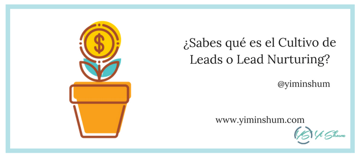 ¿Sabes qué es el Cultivo de Leads o Lead Nurturing imagen