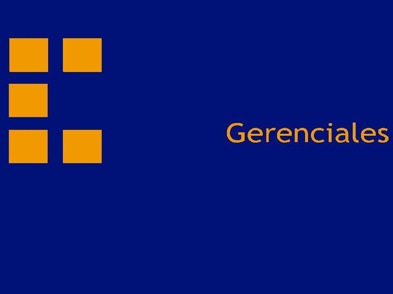 soluciones gerenciales logo