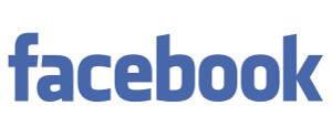 facebook brand 2017