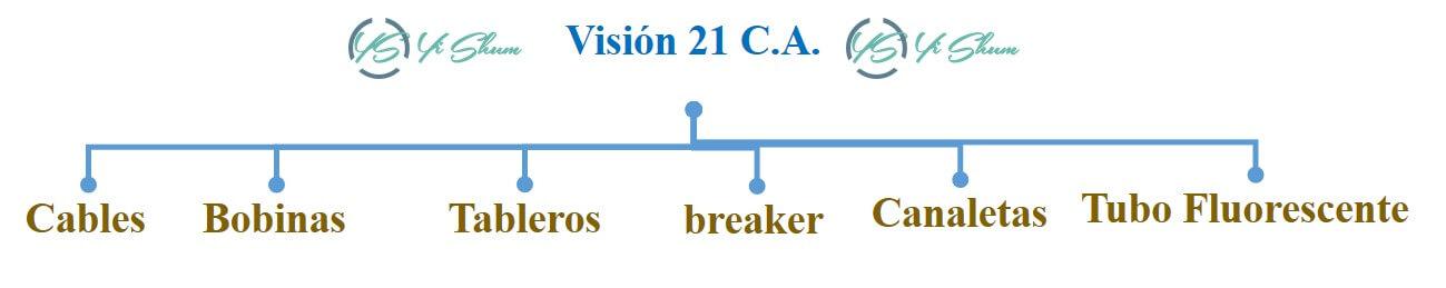 define los productos en visión 21 imagen