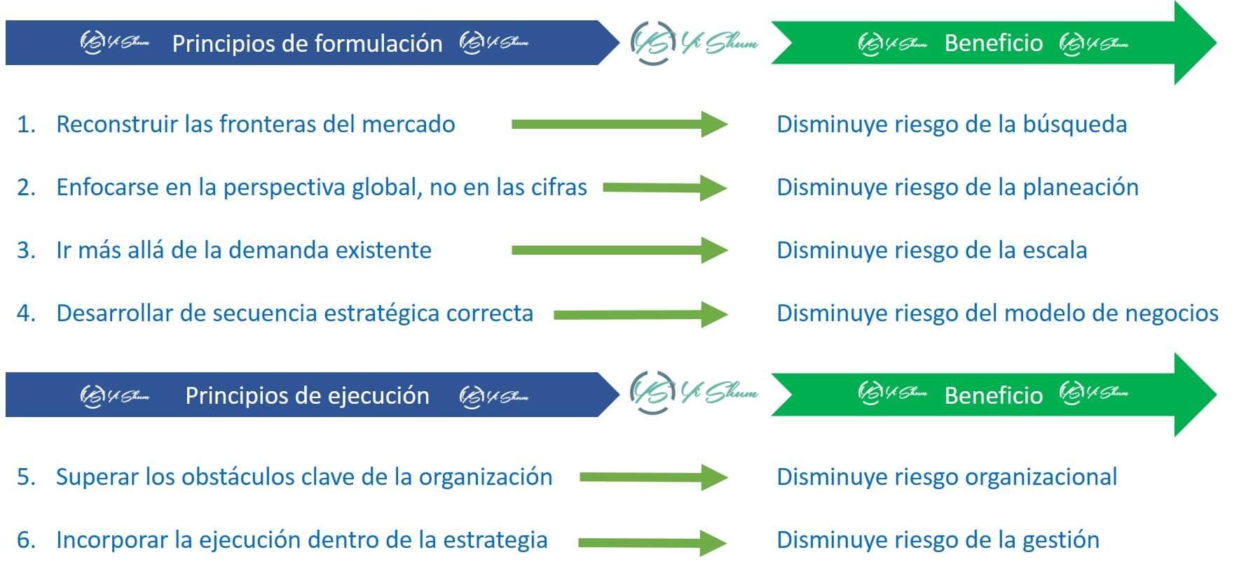 principios de formulación y ejecución imagen