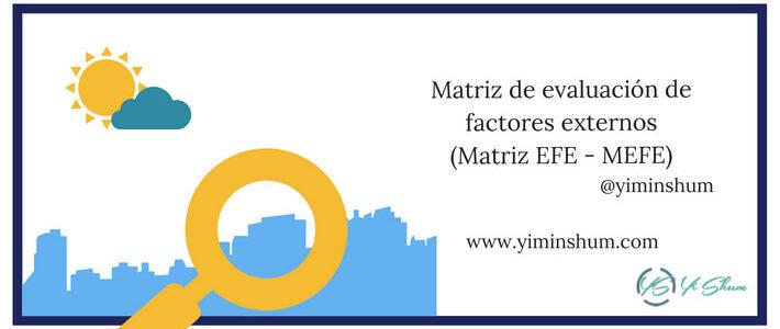 Matriz de evaluación de factores externos (Matriz EFE - MEFE) imagen